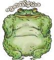 Сравнение лягушки и жабы. Сходство и различие. Разница между лягушкой и жабой